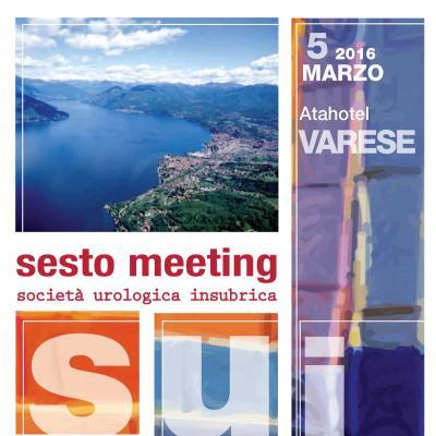 VI meeting Scoietà Urologica Insubrica - La prostata e le disfunzioni sessuali