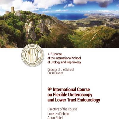 9th International Course on Flexible Ureteroscopy and Lower Tract