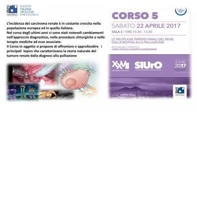 Corso ECM 5 - Le neoplasie parenchimali del rene: dalla biopsia alla palliazione