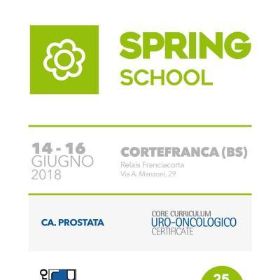 Spring School 2018